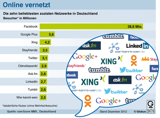 The German Social Networking Landscape
