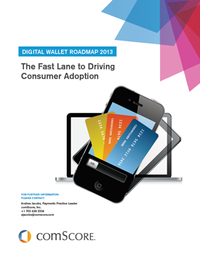 Digital Walles Roadmap 2013 - The Fast Lane to Driving Consumer Adoption