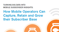 Turning Big Data into Mobile Subscriber Insights