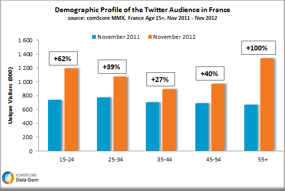 Who Is Using Twitter in France?